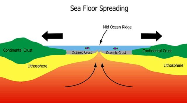 Thompson christa seafloor spreading for Ocean floor zones diagram