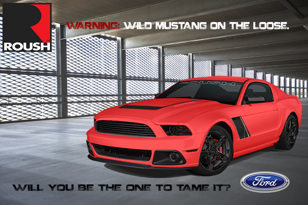 mustang on the loose!